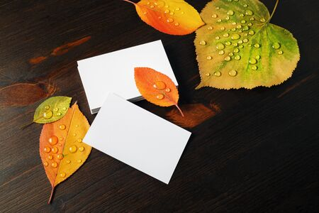 Photo of blank business cards and autumn leaves with water droplets on wood table background. 스톡 콘텐츠