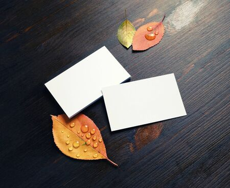 Photo of blank paper business cards and autumn leaves on wooden background. Mockup for branding identity. Foto de archivo - 135498364