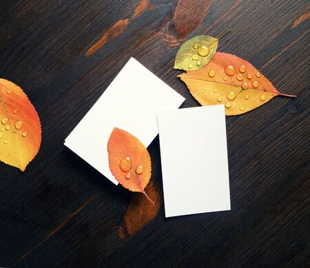Photo of white business cards and autumn leaves on wood table background. Template for branding ID. Flat lay. Foto de archivo - 135498368