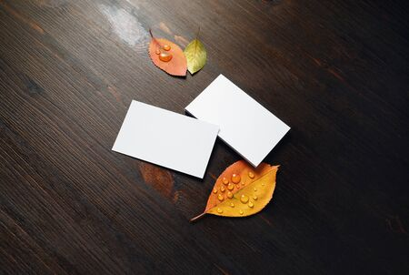 Blank white paper business cards and autumn leaves on dark wood table background. Template for placing your design. Foto de archivo - 135498374