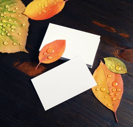 Blank business cards and autumn leaves on wooden background. Copy space for text. Foto de archivo - 135498643