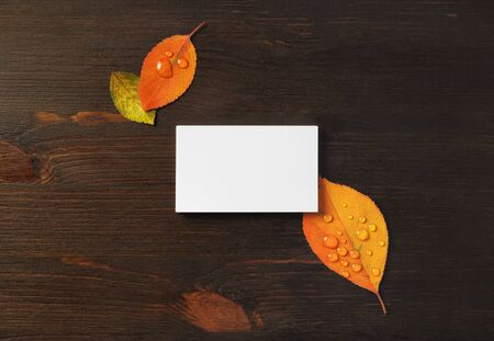 Photo of blank business card and bright autumn leaves on wood table background. Template for branding identity. Mockup for ID. Flat lay. 스톡 콘텐츠