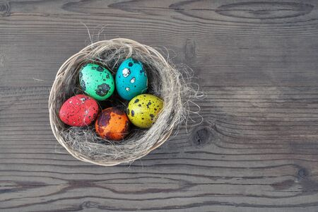 Colored Easter eggs and nest on wooden table background. Painted quail eggs.