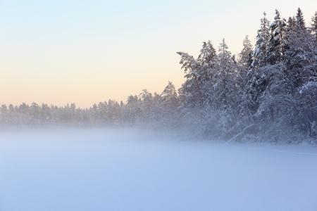 frozen lake: De bevroren winter meer in hout onder de sneeuw