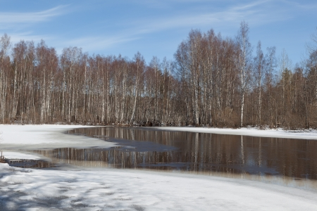 thawing: Spring landscape. Thawing snow in wood on river bank