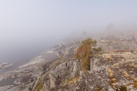 ladoga: Fog on stony coast. landscape Stock Photo