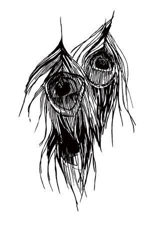 monochrome de plumes de paon dessin