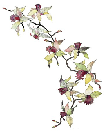 batik: Image of my artwork with a orchid branch isolated on white background Stock Photo
