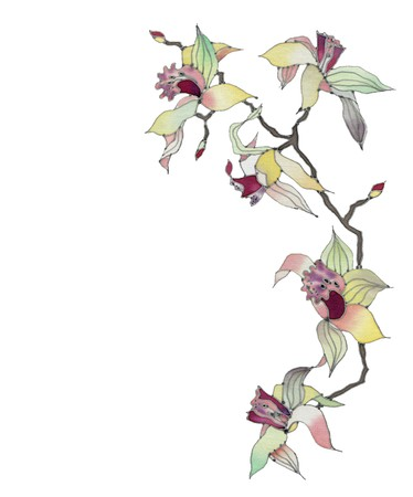 Image of my artwork with a orchid branch isolated on white background Фото со стока
