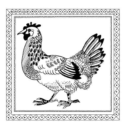 scetch: pen drawing chicken retro scetch