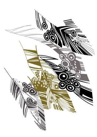 plumage: bird