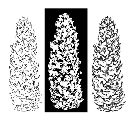 pen and brush drawing tree cones set Vector