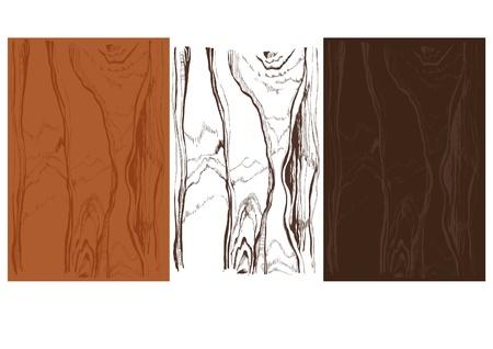 prin: textura de madera aislado más de fondo en las variantes de color diferentes