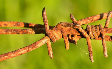 rusted barbwire on filed photo