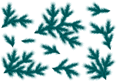 Realistic blue spruce branches. Set for decoration of a flyer, banner, header, poster for Christmas and New Year.