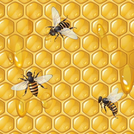 beehive: Background with bees and honeycomb