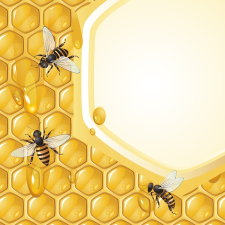 Background with bees and honeycomb