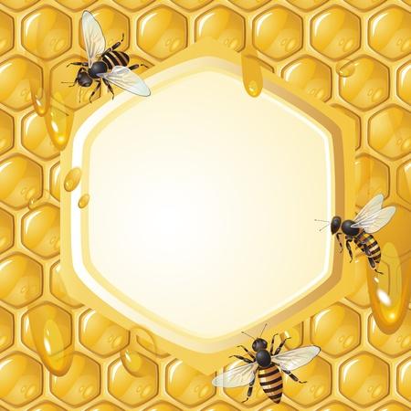 abejas panal: Fondo con las abejas, y nido de abeja Vectores