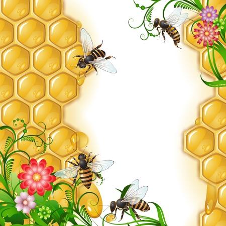 abejas panal: Fondo con las abejas, las flores y nido de abeja Vectores