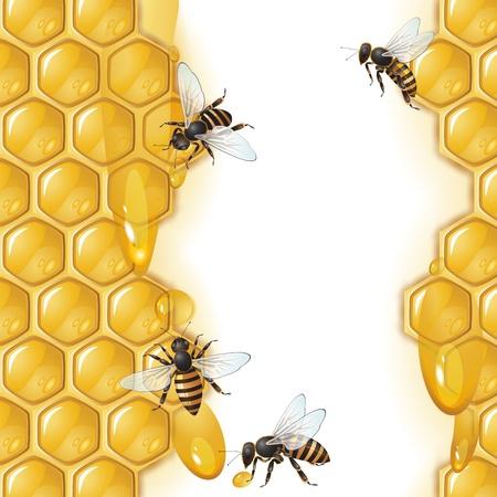 Achtergrond met bijen en honingraat