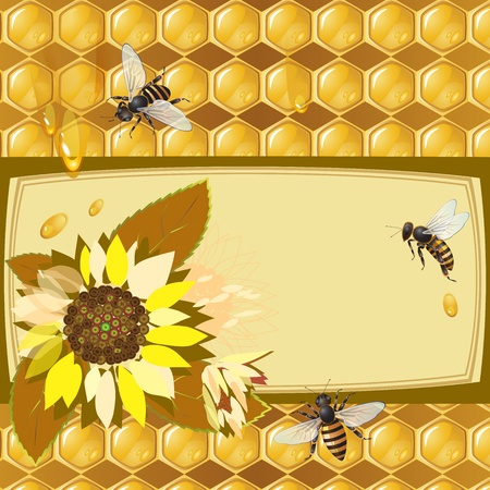 mead: Background with bees, sunflowers and honeycomb
