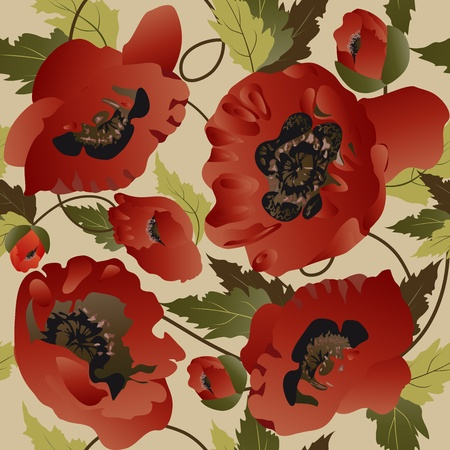 Beautiful seamless pattern with poppies  Vector