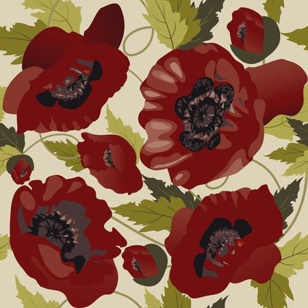 Beautiful seamless pattern with poppies  Illustration