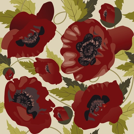 red poppy: Beautiful seamless pattern with poppies  Illustration