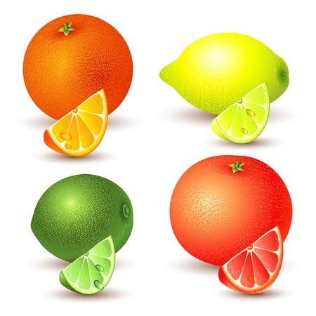 lemon slice: Set of citrus fruit - lemon, orange, grapefruit and lime
