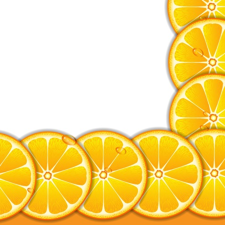 Background with orange slices Stock Vector - 13302234