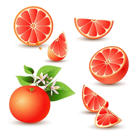 grapefruits: Fresh grapefruit with flowers, leaves and grapefruit slice