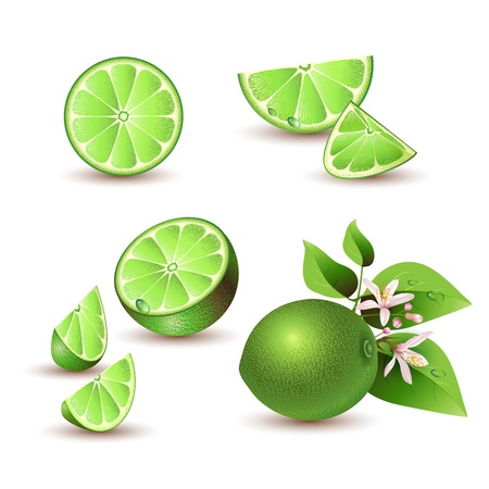 lime green background: Fresh lime with flowers, leaves and lime slices