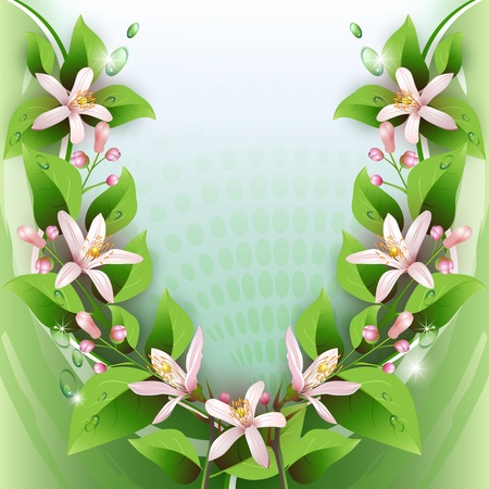 Beautiful background with delicate flowers and drops Vector