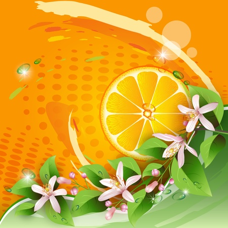 Abstract background with juicy slice of orange fruit and flowers Vector