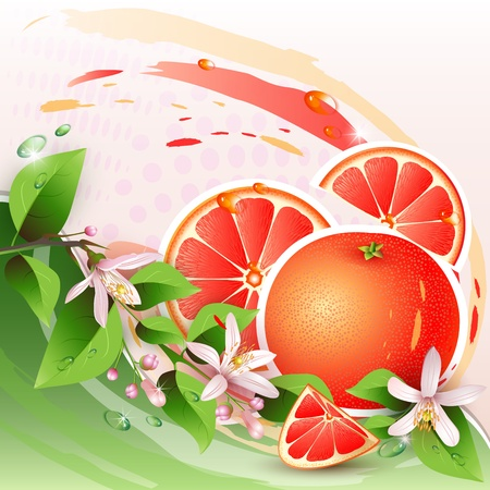 Abstract background with fresh grapefruit, flowers and grapefruit slices