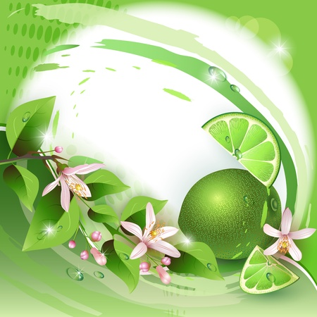 Background with fresh lime, flowers and lime slices Vector