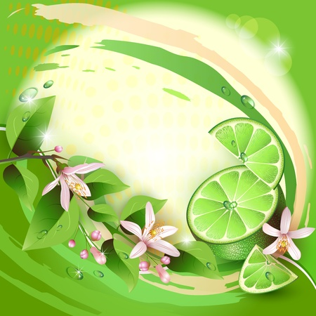 Background with lime slices, leaves and flowers Vector