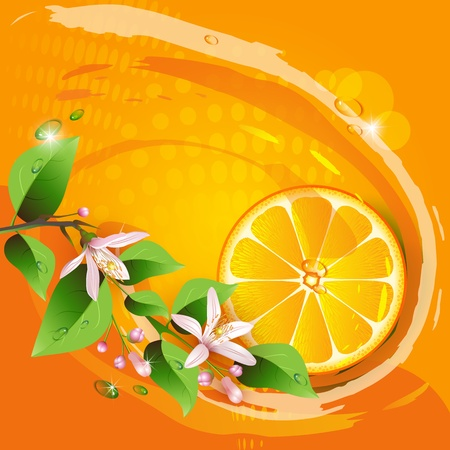 Abstract background with juicy slice of orange fruit and flowers Stock Vector - 13302220