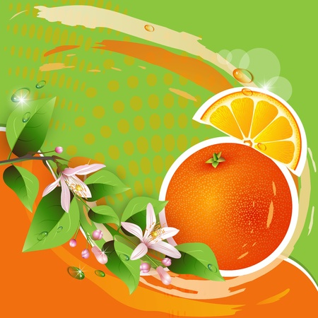 Abstract background with fresh orange, flowers and orange slices Vector