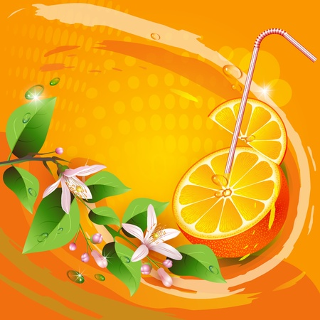 Background with orange slices, leaves and flowers