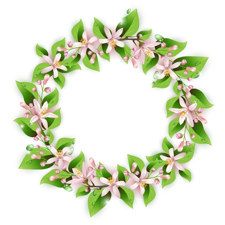 blooms: Flower wreath with beautiful pink flowers, leaves and drops