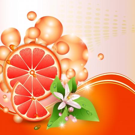 toronja: Resumen de antecedentes con jugosas rebanadas de toronja y flores
