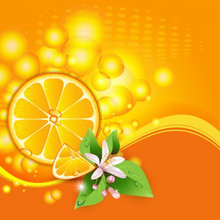 Abstract background with juicy slices of orange fruit and flowers  Vector