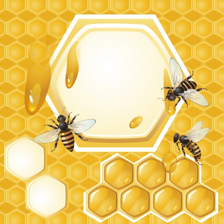Background with bees and honeycomb  Vector