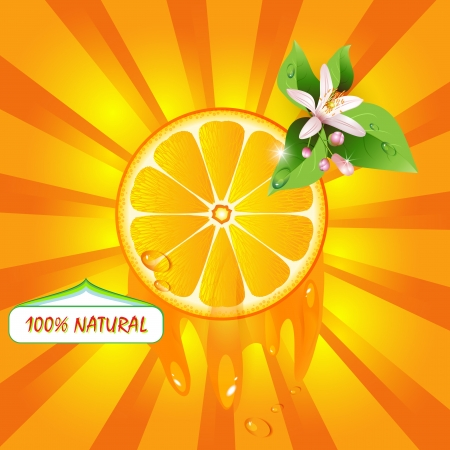 Background with orange slice and flower Vector