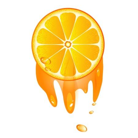 Juicy slice of orange fruit isolated on white background  Stock Vector - 14180797