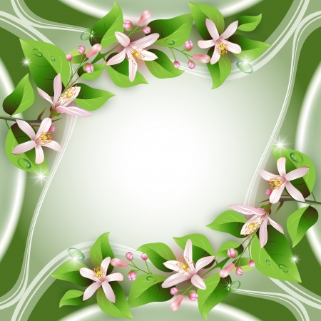 Elegant background with beautiful flowers and drops Vector