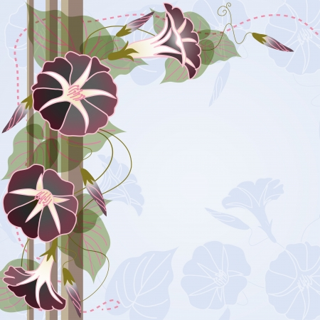 Elegant background with beautiful Morning glory Vector
