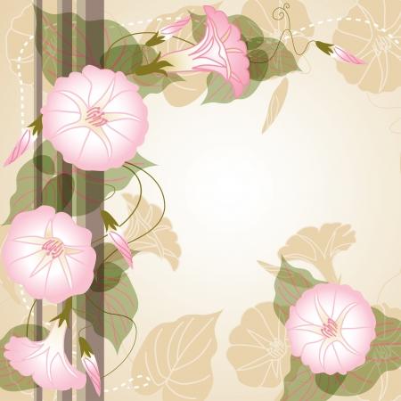 morning glory: Beautiful background with pink Morning glory Illustration