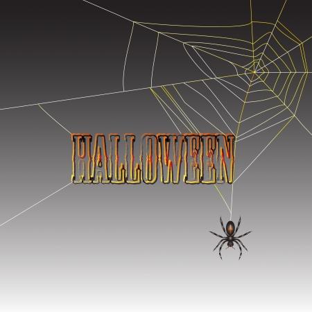 spidery: Halloween spider on dark background